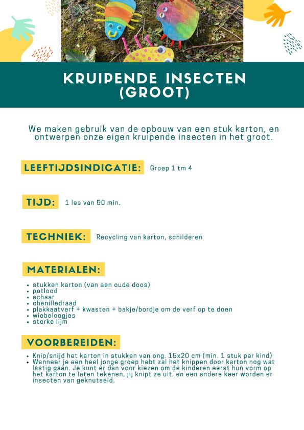 2de pagina lesbrief insecten