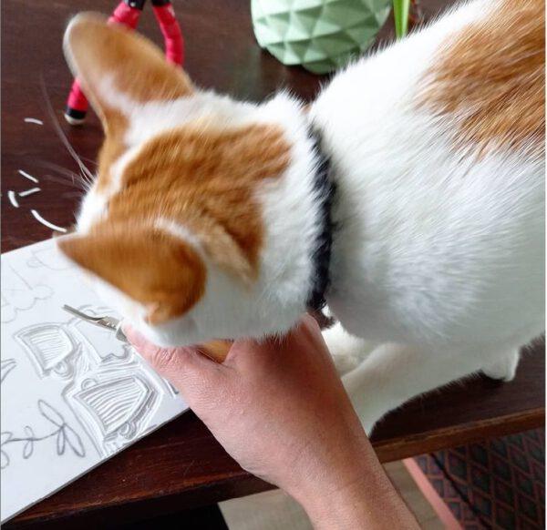 kat photobombed terwijl ik stempels snijd